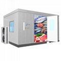 -18~-25℃ cold storage room for meat and