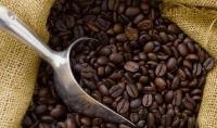 进口咖啡豆或咖啡清关报关