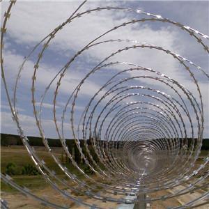 Concertina Wire   concertina wire border    military concertina wire