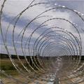 Concertina Wire   concertina wire border