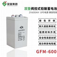 双登GFM-600 2V600AH 铅酸免维护蓄电池 持久续航 UPS不间断电源 后备电源