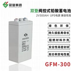双登GFM-300 2V200AH 铅酸免维护蓄电池 通讯系统后备电源