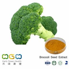 Broccoli Seed Extract