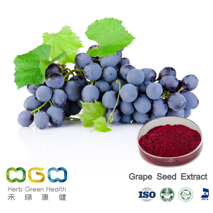 Grape Seed Extract 1