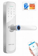 Tuya TT Lock Biometric Fingerprint Security Intelligent Lock