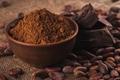 Alkalized Cocoa Powder  2
