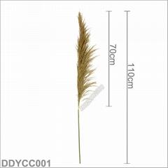 树猫110cm真芦苇干花带穗自然蒲苇婚庆布置花艺摆件室内花束