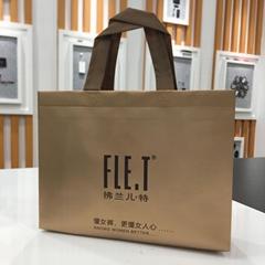 Top Quality Promotion Laminated Non Woven Bag/Non Woven Shopping Bag