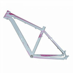 wholesale factory supply high quality bicycle frame