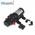 Whaleflo DC 12V 3.8LPM Small Diaphragm Pressure Water Pump 2.4Bar 1.0GPM