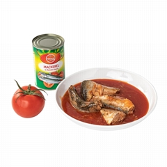 Canned fish Canned Mackerel in Tomato Sauce