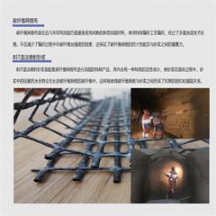 貝斯特加強型碳纖維絲網網格布