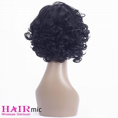 Short Curly human hair Wave Wig with bang Factory Wholesale Wig for Women