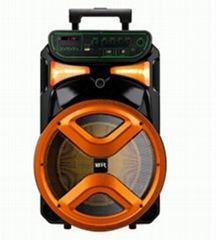 Colorful Checp LED Light Plastic Portable Speaker 12 Inch
