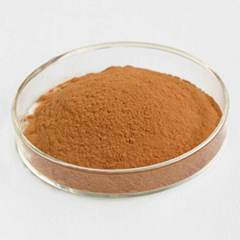 Natural Feverfew Extract Parthenolide 0.3% 0.5% 0.8% HPLC