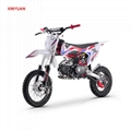 Dirt Bike 110cc (DB608)
