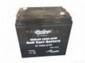 牵引车及叉车电池(电瓶) TRACTION BATTERY 4