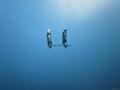 RI-80  干簧管,貼片干簧管 現貨 3