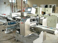 Stainless Steel flow packing machine