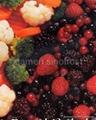 速凍水果  (冷凍水果)