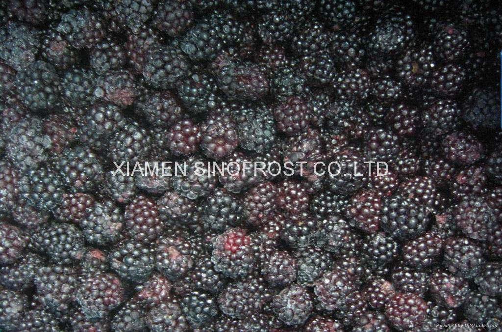 冷凍黑莓,速凍黑莓 1
