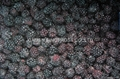 IQF Blackberries,Frozen Blackberries,IQF blackberry,Frozen Blackberry