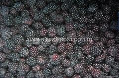 冷冻黑莓,速冻黑莓