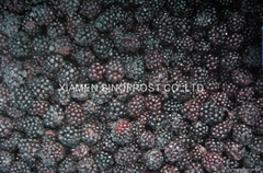 IQF blackberries,Frozen  (Hot Product - 1*)