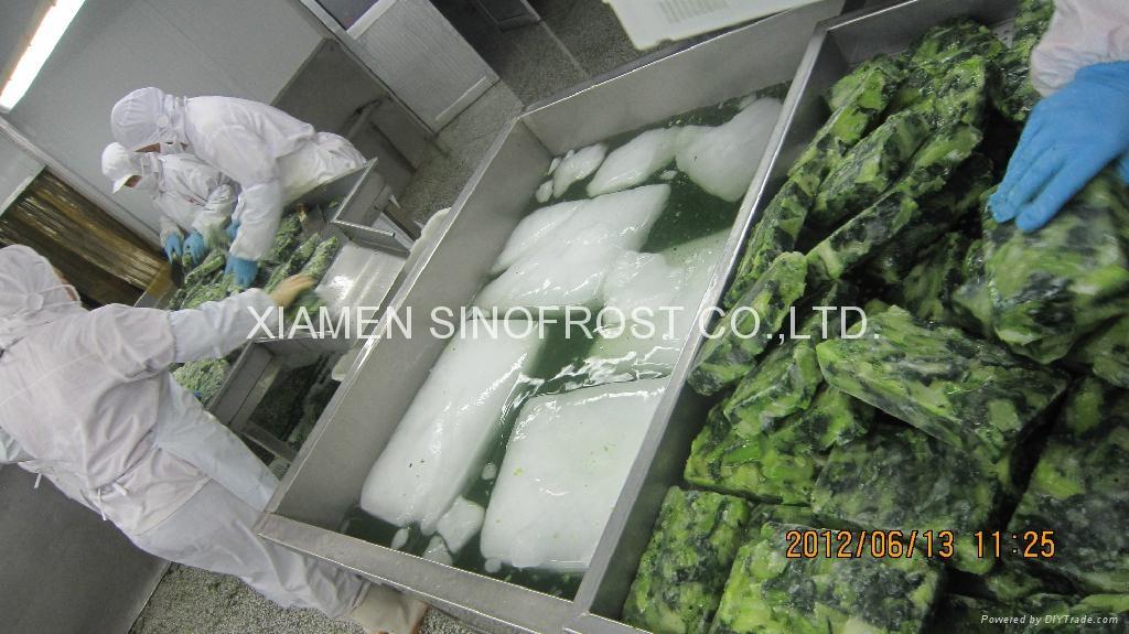 盤凍青梗菜段,冷凍青梗菜段 3