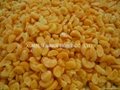 IQF mandarin oranges segments,new crop