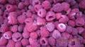 IQF Raspberries,Frozen Raspberries,wholes/brokens/crumbles/puree 5