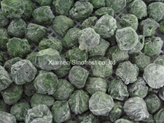 Frozen spinach leaf balls,IQF chopped spinach,BQF cut spinach