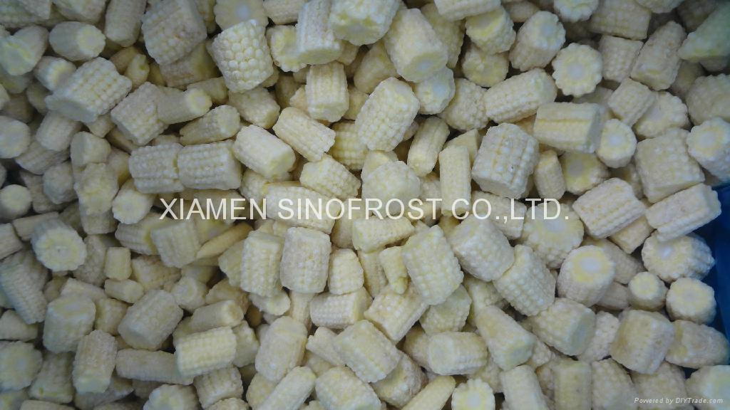 冷凍玉米筍,速凍玉米筍 2
