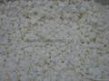 冷凍洋蔥,速凍洋蔥 3