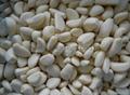 冷凍蒜瓣,冷凍蒜丁,冷凍蒜泥 4