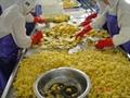IQF pineapples ( tidbits/chunks/diced),Frozen pineapples (tidbits/chunks/diced) 2