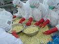 IQF Babycorns Cuts,IQF Cut Baby Corns,Frozen Babycorn Cuts 5
