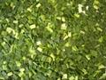 冷凍韭菜段,速凍韭菜段 3