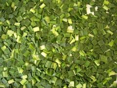 冷冻韭菜段,速冻韭菜段