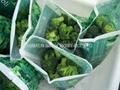 IQF broccoli  (florets/cuts/stalks),BQF broccoli (cuts/spears),Frozen broccoli 5