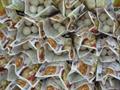 冷凍芋仔,速凍芋仔,冷凍圓芋仔,速凍六角芋仔 9