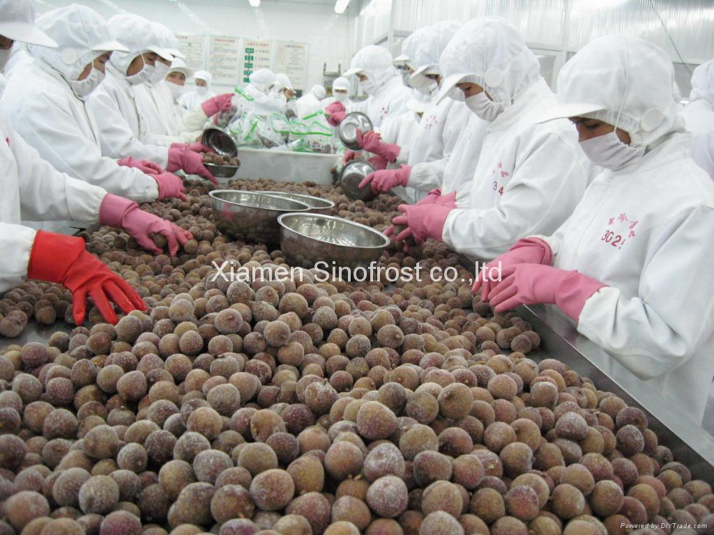 IQF Lychees ,Frozen Litchi,IQF Litchis,Frozen Lychees 9