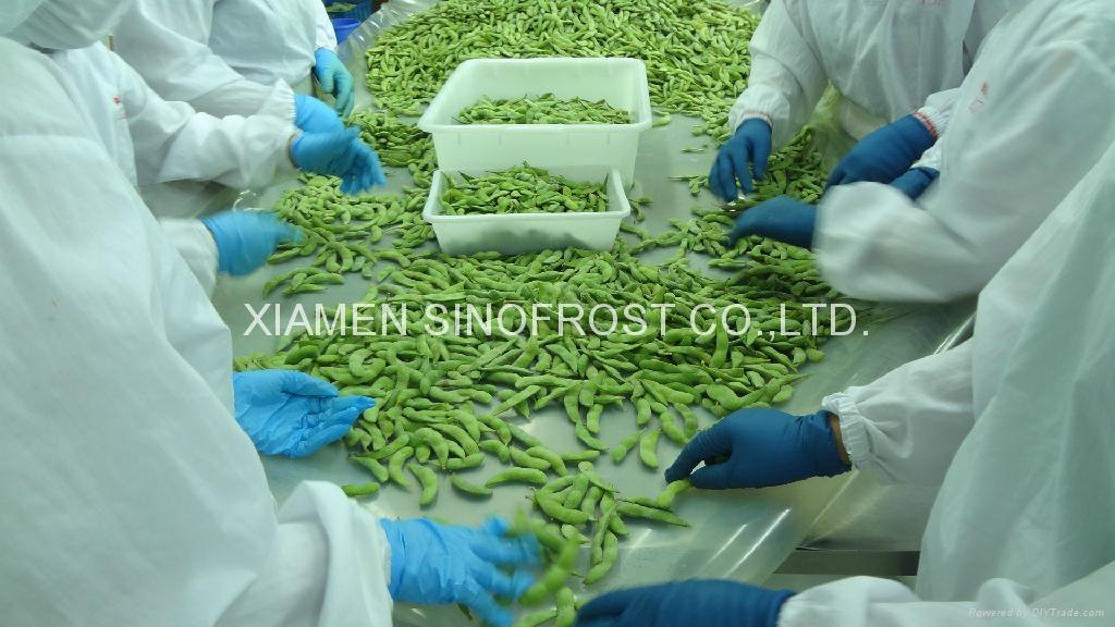 IQF edamame,Frozen edamame,IQF soy beans,Frozen soy beans 6