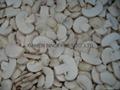 IQF champignon mushrooms,Frozen mushrooms,IQF mushrooms(slices/wholes/cuts ) 2