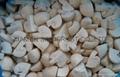 IQF champignon mushrooms slices,IQF sliced champignon mushrooms,frozen mushrooms