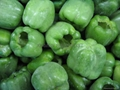 IQF green peppers strips,Frozen green peppers strips,slightly blanched