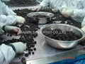 IQF Blackberries,Frozen Blackberries,cultivated 3