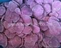 New crop IQF purple sweet potato slices/diced