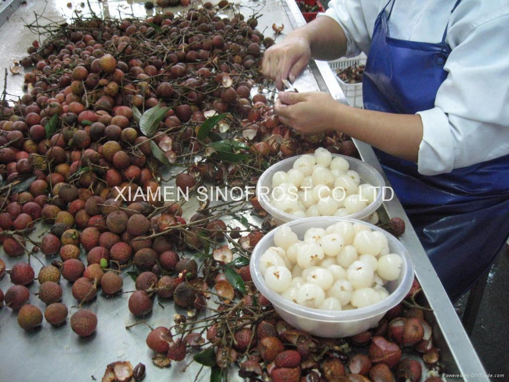 IQF Lychees ,Frozen Litchi,IQF Litchis,Frozen Lychees 13