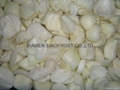 IQF Diced Onions,Frozen Onions Dices,IQF Onion Dices,Frozen Diced Onions 6
